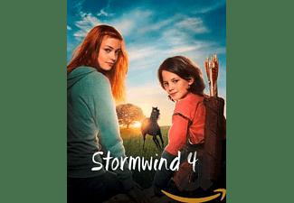 Stormwind 4 | DVD