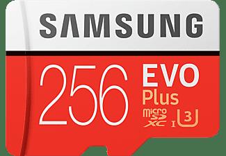 Samsung 256GB SDXC EVO Plus (2020)