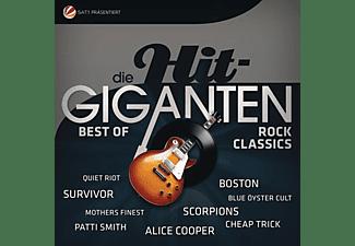 Various - Die Hit Giganten-Rock Classics - (Vinyl)