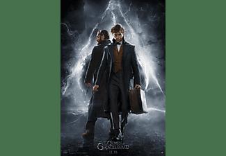 Fantastic Beasts - The Crimes Of Grindelwald | DVD
