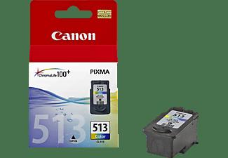 CANON Tintenpatrone 2971B001 CL-513