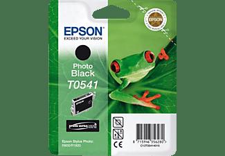 EPSON T0541 Foto Schwarz