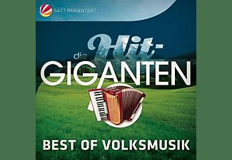 VARIOUS - Die Hit Giganten Best Of Volksmusik  - (CD)