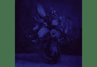 Deaf Wish - Lithium Zion  - (CD)