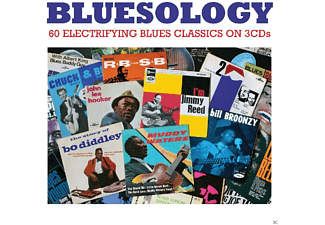 VARIOUS - Bluesology  - (CD)