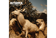 Interpol - Our Love To Admire (10th Anniversary,CD+DVD) [CD + DVD Video]
