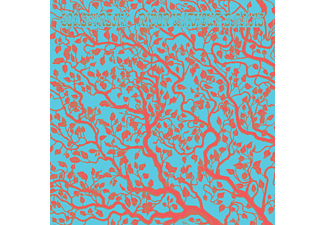 Leo Svirsky - River Without Banks  - (Vinyl)
