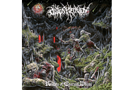 Outer Heaven - Realms Of Eternal Decay [Vinyl]