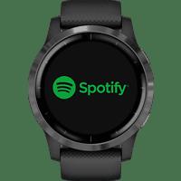 GARMIN Vivoactive 4 Smartwatch Edelstahl Silikon, k.A., Schwarz/Schiefergrau