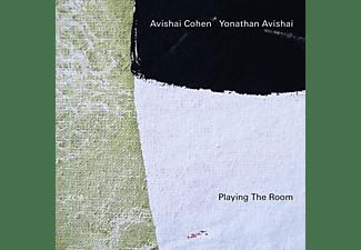 Cohen,Avishai/Avishai,Yonathan - Playing The Room  - (Vinyl)