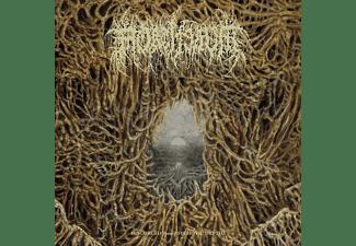 Mortiferum - disgorged from psychotic depths  - (Vinyl)
