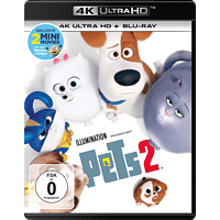 Pets 2 [4K Ultra HD Blu-ray + Blu-ray]