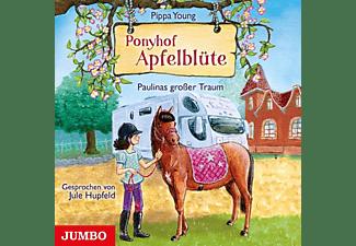 Pippa Young - Ponyhof Apfelblüte (14).Paulinas Grosser Traum  - (CD)