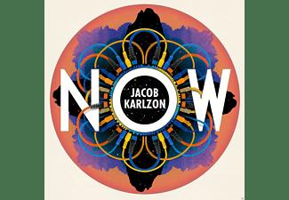 Jacob Karlzon - Now  - (Vinyl)
