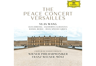VARIOUS - The Peace Concert Versailles  - (CD)