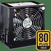 ULTRON REALPOWER RP-850 80 plus gold PC-Netzteil, Schwarz