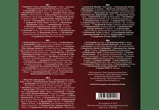 VARIOUS - 100 Meisterwerke Mozart  - (CD)