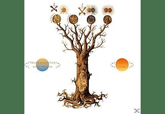 John Zorn - TRANSMIGRATION OF THE MAGUS  - (CD)