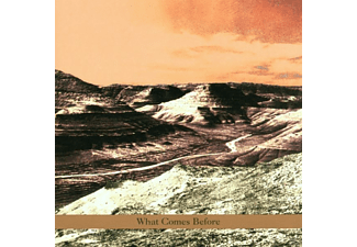 Goldberg/Schott/Sarin - WHAT COMES BEFORE  - (CD)