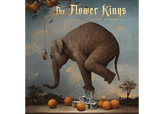 The Flower Kings - WAITING FOR MIRACLES  - (Vinyl)
