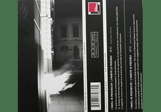 Dominique Vasseur - J'habite le Possible  - (CD)