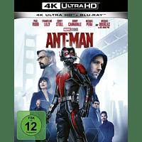 ANT-MAN 4K (UHD+2D) - UHD ST [4K Ultra HD Blu-ray + Blu-ray]