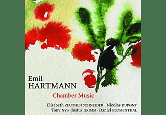 Nicolas Dupont, Tony Nys, Justus Grimm, Daniel Blumenthal, Elisabeth Zeuthen Schneider - Chamber Music  - (CD)