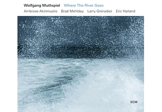 Wolfgang Muthspiel - Where The River Goes  - (Vinyl)