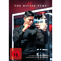 The Divine Fury [DVD]