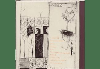 Alasdair Roberts - FIERY MARGIN  - (CD)