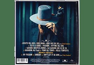 Zucchero - D.O.C.  - (CD)