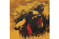 Dead Rider - Chills On Glass [Vinyl]