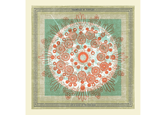 Trampled By Turtles - Life is Good on the Open Road  - (CD)