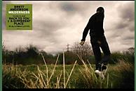 Brett Anderson - Wilderness (transparentes Vinyl) [Vinyl]