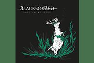 Blackboxred - Salt In My Eyes [Vinyl]