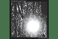 Six Organs Of Admittance - LUMINOUS NIGHT [Vinyl]