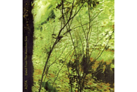 Azita - Detail From The Mountain...EP [CD 3 Zoll Single (2-Track)]