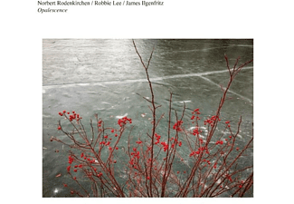 Norbert Rodenkirchen, Robbie Lee, James Ilgenfritz - OPALESCENCE  - (CD)