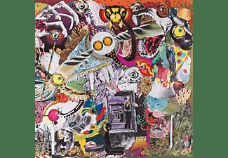 Giraffes? Giraffes! - MEMORY LAME  - (Vinyl)