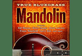 VARIOUS - True Bluegrass: Mandolin  - (CD)