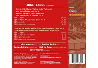 Nina Karmon, Pauline Sachse, Julius Otto Grimm, Oliver Triendl, Niek de Groot - Piano Quintet op.3,Piano Quartet op.6  - (CD)