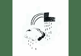 Damien Jurado - In The Shape Of A Storm  - (CD)
