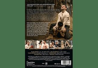 Donnybrook - Below the Belt DVD