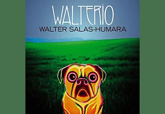 Walter Salas-humara - Walterio (Black Vinyl)  - (Vinyl)