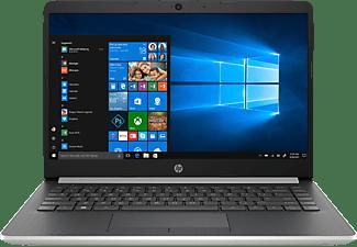 HP 14-dk0355ng, Notebook mit 14 Zoll Display, Ryzen™ 5 Prozessor, 8 GB RAM, 1 TB HDD, 128 GB SSD, Radeon Vega 8, Silber