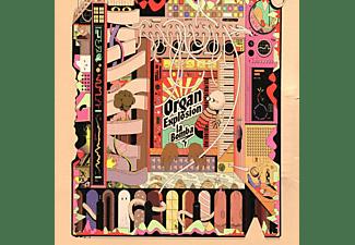 Organ Explosion - La Bomba  - (Vinyl)