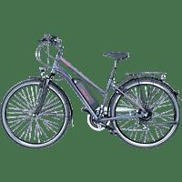 FISCHER ETD 1806-S1 Trekkingrad (28 Zoll, 44 cm, 422 Wh, Grau matt)