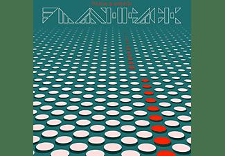 Fujiya & Miyagi - FLASHBACK  - (Vinyl)