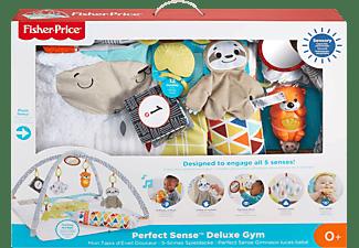 FISHER PRICE 5-Sinnes Spieldecke, Krabbeldecke mit Spielbogen Babydecke Mehrfarbig