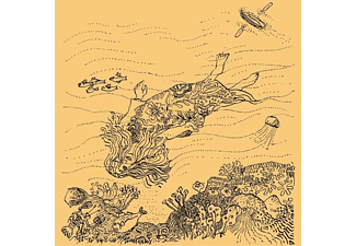 Needlepoint - The Diary Of Robert Reverie  - (CD)